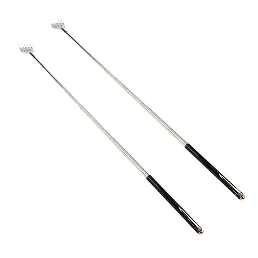 処理する製油所リスクdailymall 2ピースバックスクラッチャー伸縮式爪拡張可能なかゆみハンドマッサージペンフック付き