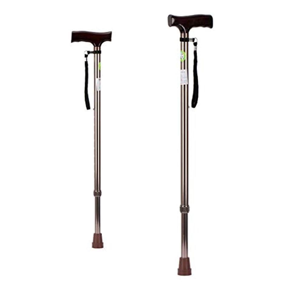 物理学者十代の若者たちオーバーヘッドLekoc 松葉杖 歩行器 10段階調整 滑り止め 耐荷重100kg 高齢者用 (1本)