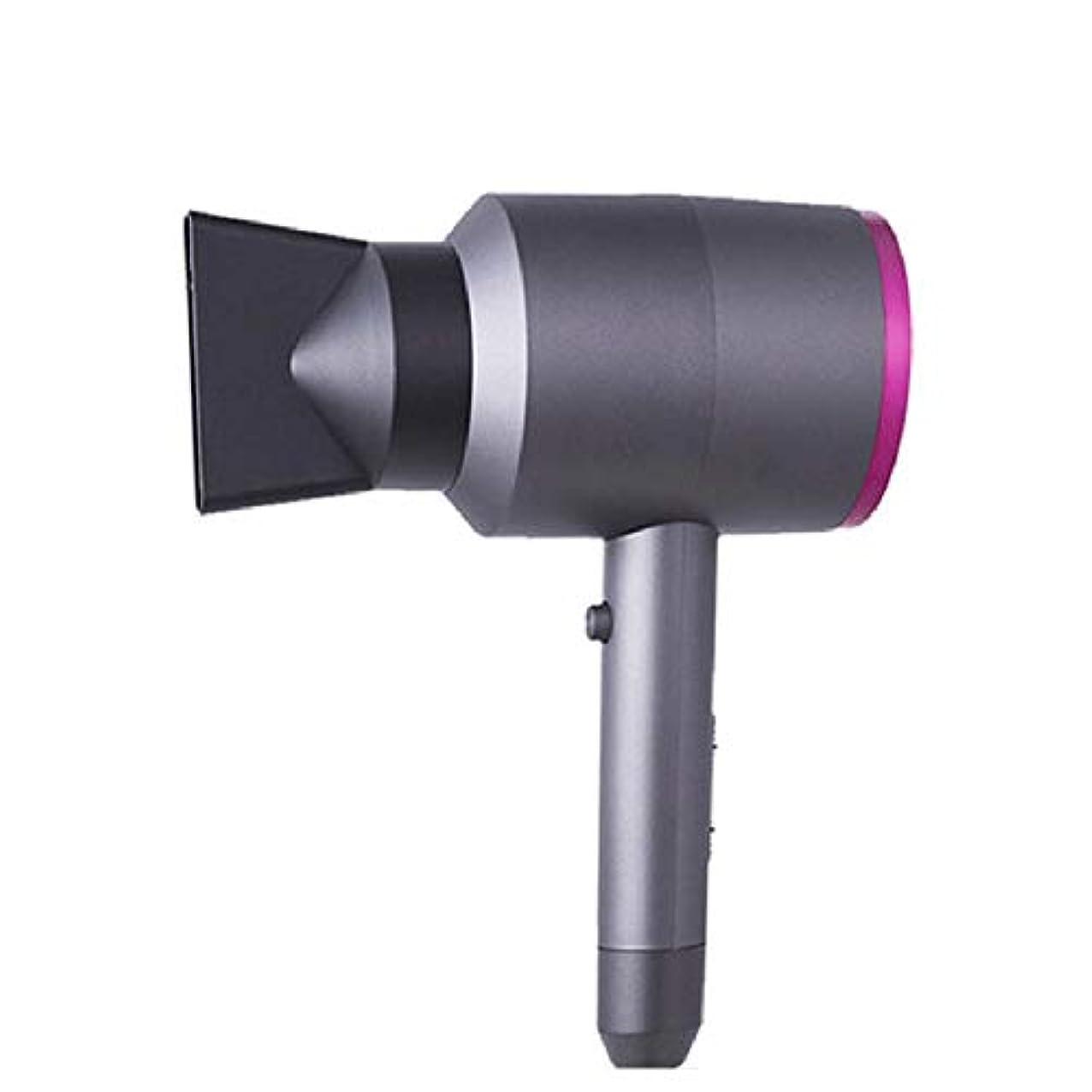 流行においビスケットディフューザーイオン調整付き1600wプロフェッショナルヘアドライヤー-一定温度は髪を傷つけません、強力で速いヘアドライヤーブロードライヤーモーター加熱冷熱風恒温ヘアケア