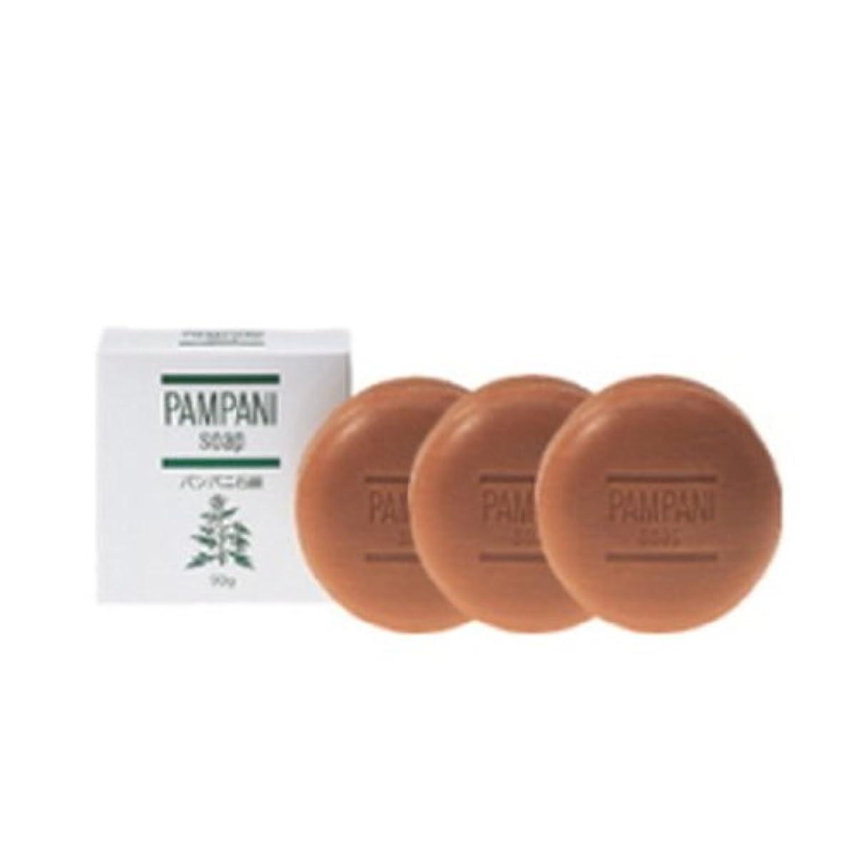 慰め上記の頭と肩虫を数えるパンパニ(PAMPANI) せっけん 90g×3個組