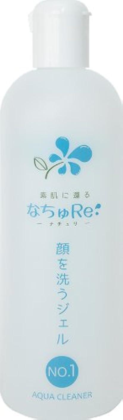 薬体操選手レースNO.1 アクアクリーナー「顔を洗うジェル」(500ml)
