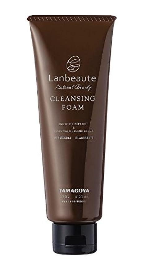 狂乱望ましい性差別Lanbeaute ツーインワン洗顔フォーム(120g)