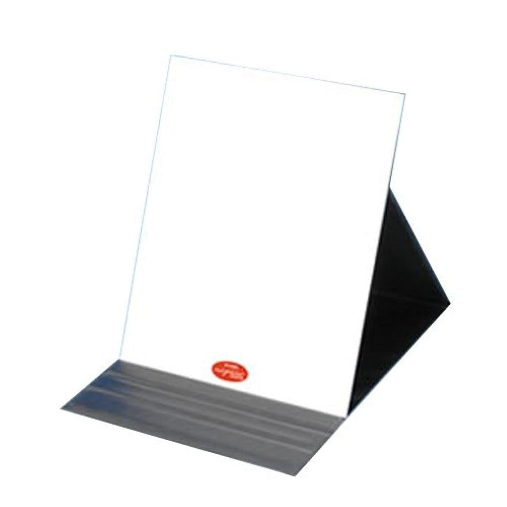 不平を言う奇跡夕食を作る堀内鏡工業 ナピュア プロモデル角度調整3段階付き折立ミラー エコLL 単品
