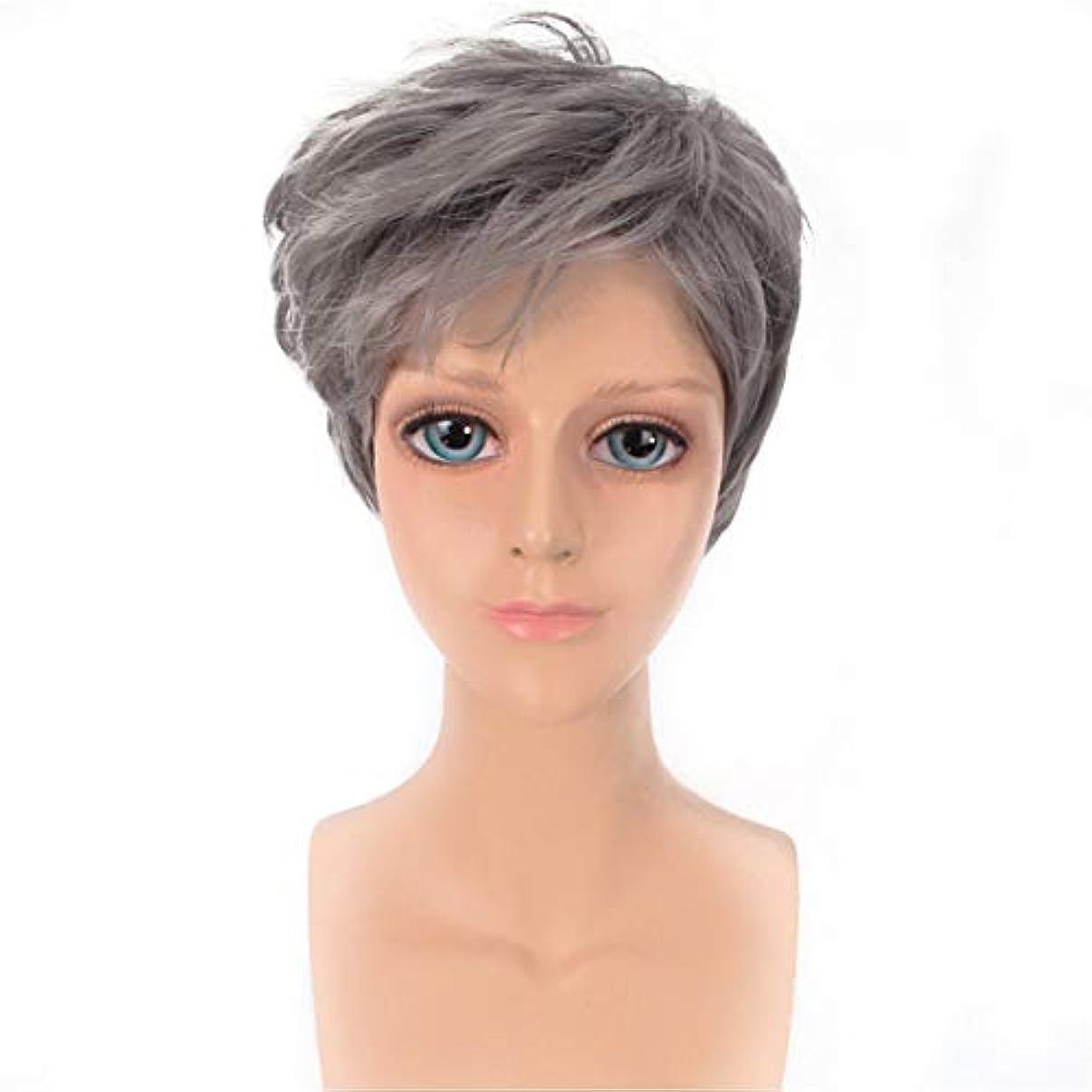 プリーツ家庭シェルターYOUQIU メンズかつらハンサムなグレー斜め前髪ショートストレートヘアウィッグ原宿COSウィッグウィッグ (色 : グレー)