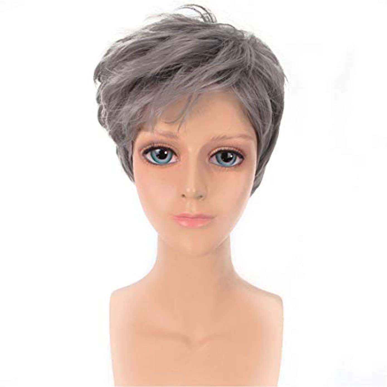 ちなみに強調ロマンチックYOUQIU メンズかつらハンサムなグレー斜め前髪ショートストレートヘアウィッグ原宿COSウィッグウィッグ (色 : グレー)