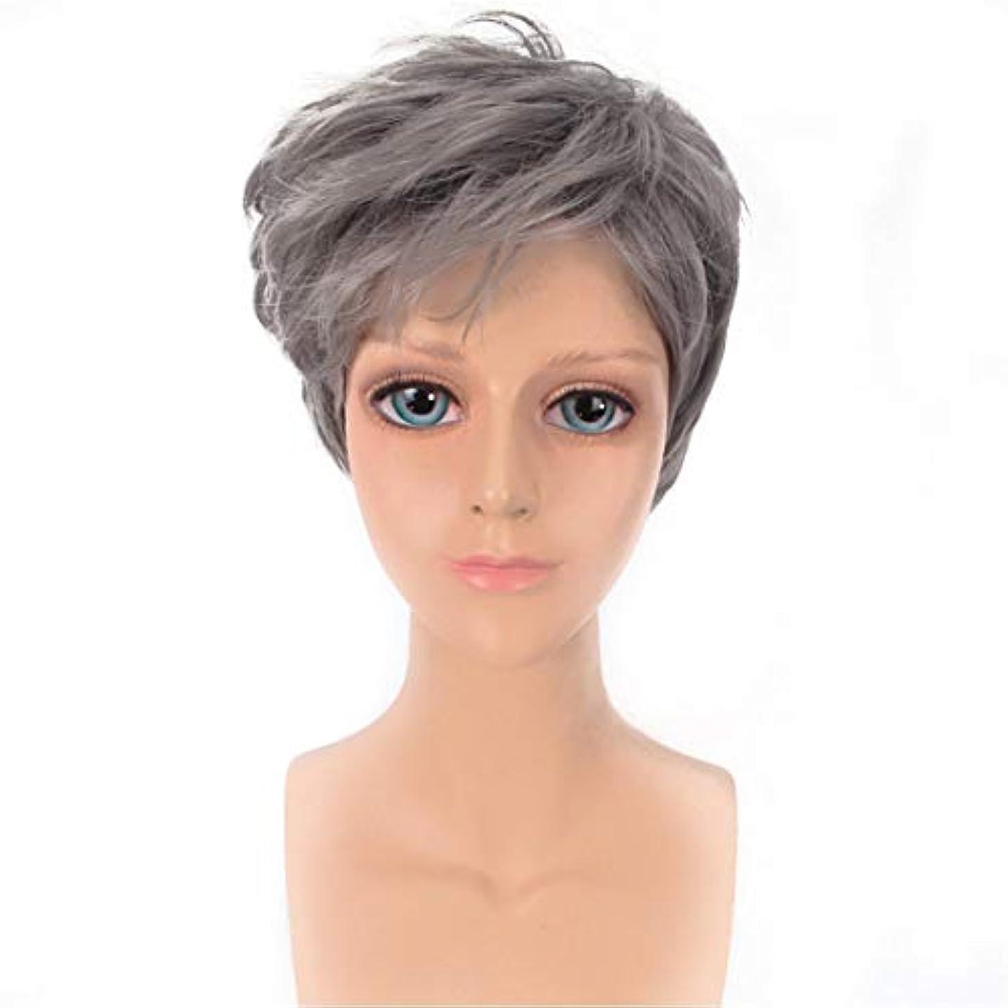 貢献避難する早くYOUQIU メンズかつらハンサムなグレー斜め前髪ショートストレートヘアウィッグ原宿COSウィッグウィッグ (色 : グレー)