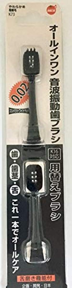 評判踏みつけピッチオレンジケアプロダクツ オールインワン音波振動歯ブラシ K16 替え 2本