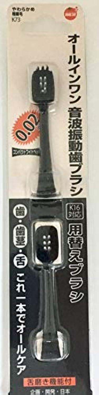 線十イノセンスオレンジケアプロダクツ オールインワン音波振動歯ブラシ K16 替え 2本 詰替え用 替え2本