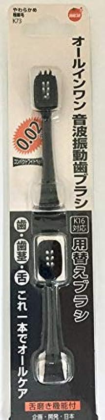 スペシャリストブラインド居住者オレンジケアプロダクツ オールインワン音波振動歯ブラシ K16 替え 2本