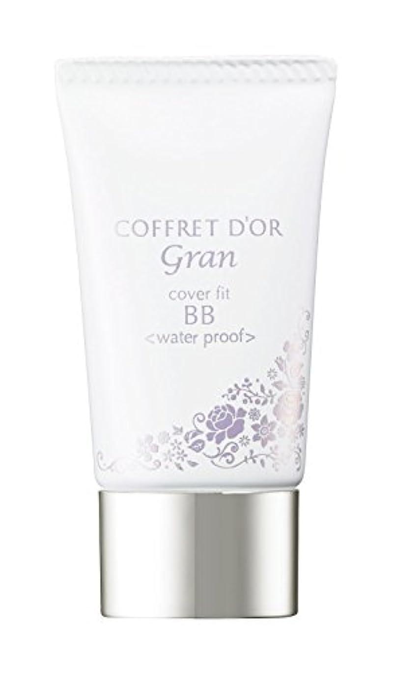 精神要件水コフレドール グラン BBクリーム カバーフィットBB ウォータープルーフ ライトベージュ SPF40/PA+++ 25g