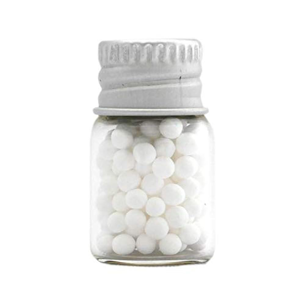 入り口思いつく藤色アロマ?エコビーズ(直径約2mm)0.5g 銀色フタ付きミニボトル入り 香りをしみこませることのできるアロマボール
