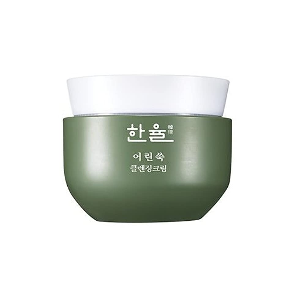 たくさん吸う豚肉Hanyul Pure Artemisia Cleansing Cream