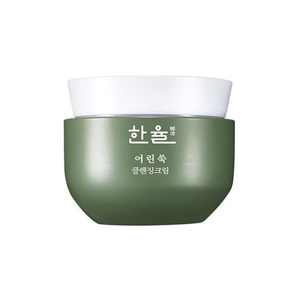 ラップトップ秘書議論するHanyul Pure Artemisia Cleansing Cream