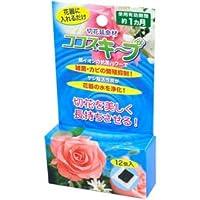【まとめ 4セット】 後藤 生け花イキイキ ココスキープ(12個入) 870329
