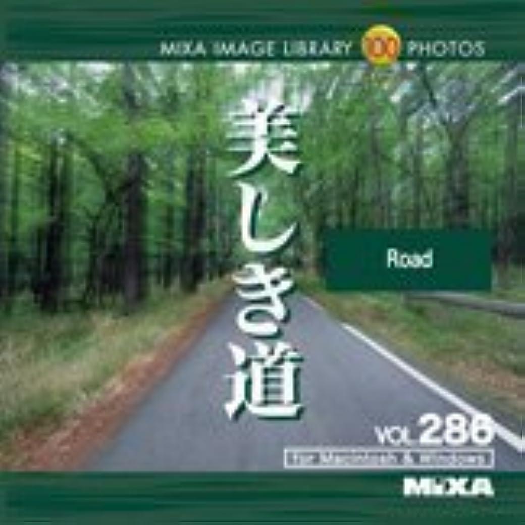 コンピューターゲームをプレイするスロット想像力豊かなMIXA IMAGE LIBRARY Vol.286 美しき道