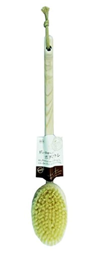 混雑算術モンスターオーエ バスメイト ボディブラシ 曲柄 ソフト 天然木 約39×7.5×7cm