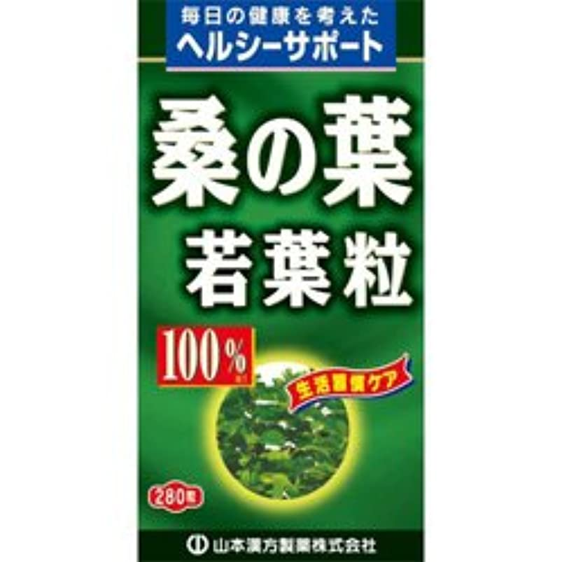 【山本漢方製薬】桑の葉粒 100% 280粒 ×10個セット