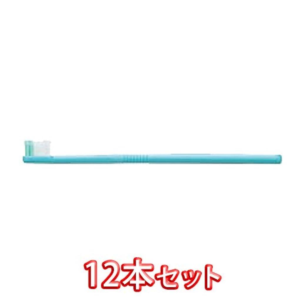 指導するビュッフェ滝ライオン オルソドンティック 歯ブラシ DENT.EX Orthodontic-R 12本入