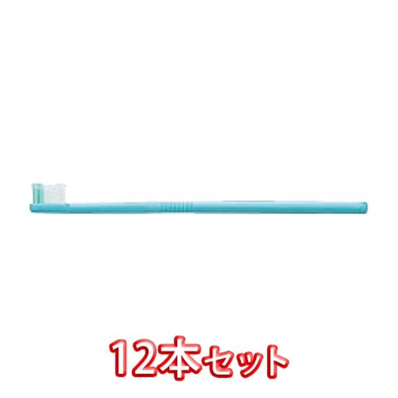 ハリケーン視力環境保護主義者ライオン オルソドンティック 歯ブラシ DENT.EX Orthodontic-R 12本入