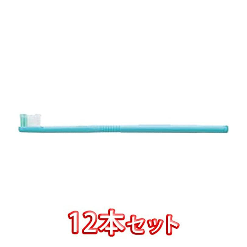 細菌遺棄された世界に死んだライオン オルソドンティック 歯ブラシ DENT.EX Orthodontic-R 12本入