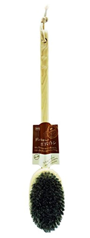 作曲する素人せせらぎオーエ バスメイト ボディブラシ 曲柄 ハード 天然木 約39×7.5×7cm