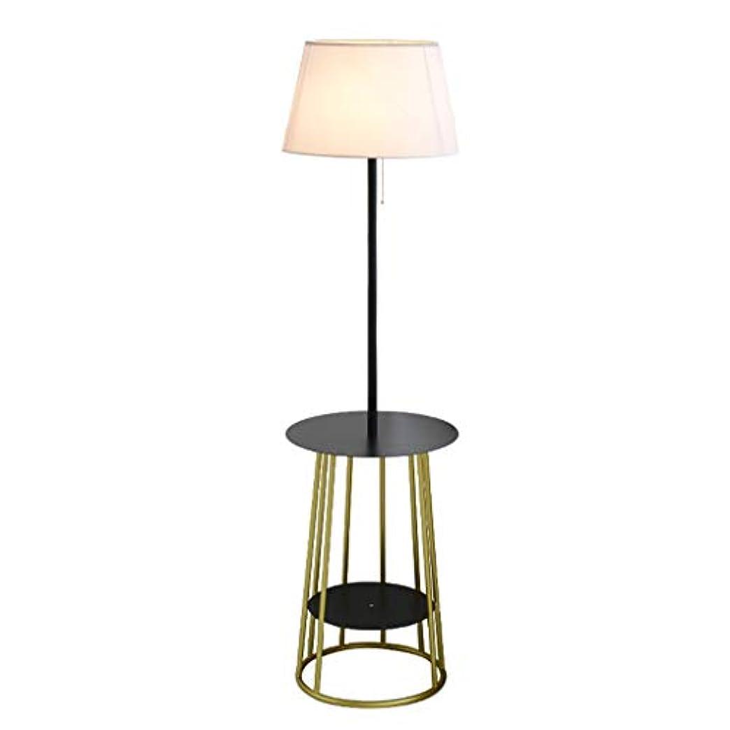 住人数学海峡ひも床ランプの寝室の居間のための鉄の皿が付いている現代簡易性の永続的なランプ高さ:150cm (Color : BLACK, Size : GOLD#2)