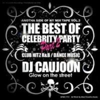 The Best Of Cereblity Party Pt.2 / DJ Caujoon