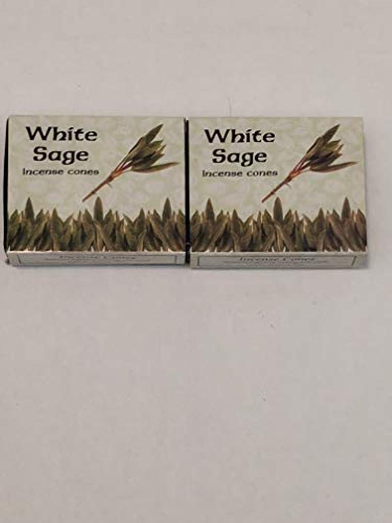 必需品晴れ試験Kamini ホワイトセージ線香 マルチパック 2 Packs (20 Cones) ブラウン