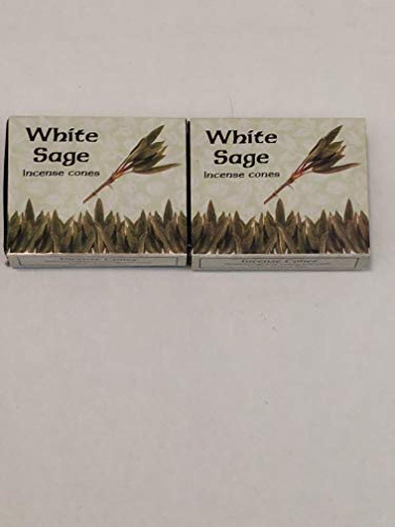 インゲン菊スリーブKamini ホワイトセージ線香 マルチパック 2 Packs (20 Cones) ブラウン