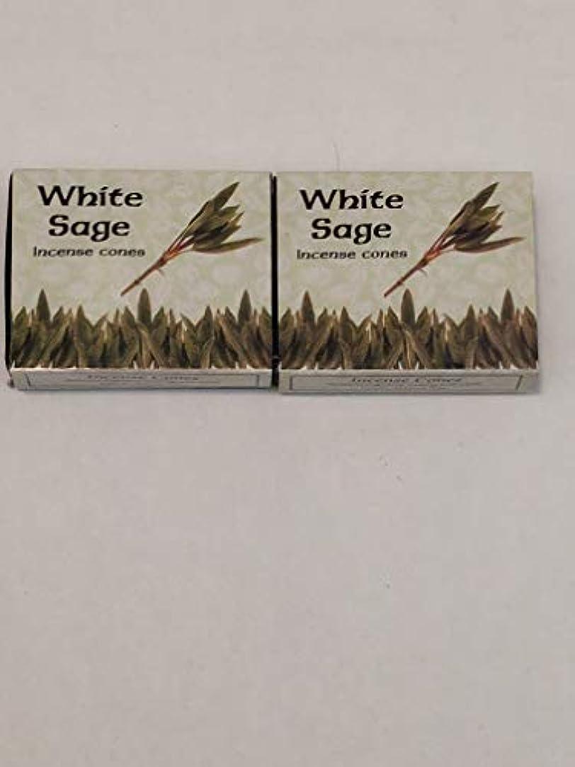 偶然のアクロバットティッシュKamini ホワイトセージ線香 マルチパック 2 Packs (20 Cones) ブラウン