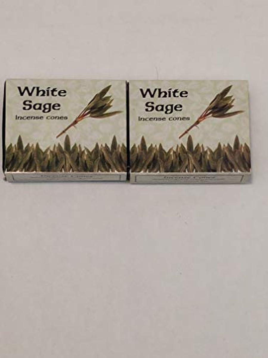 伝記不和おばさんKamini ホワイトセージ線香 マルチパック 2 Packs (20 Cones) ブラウン