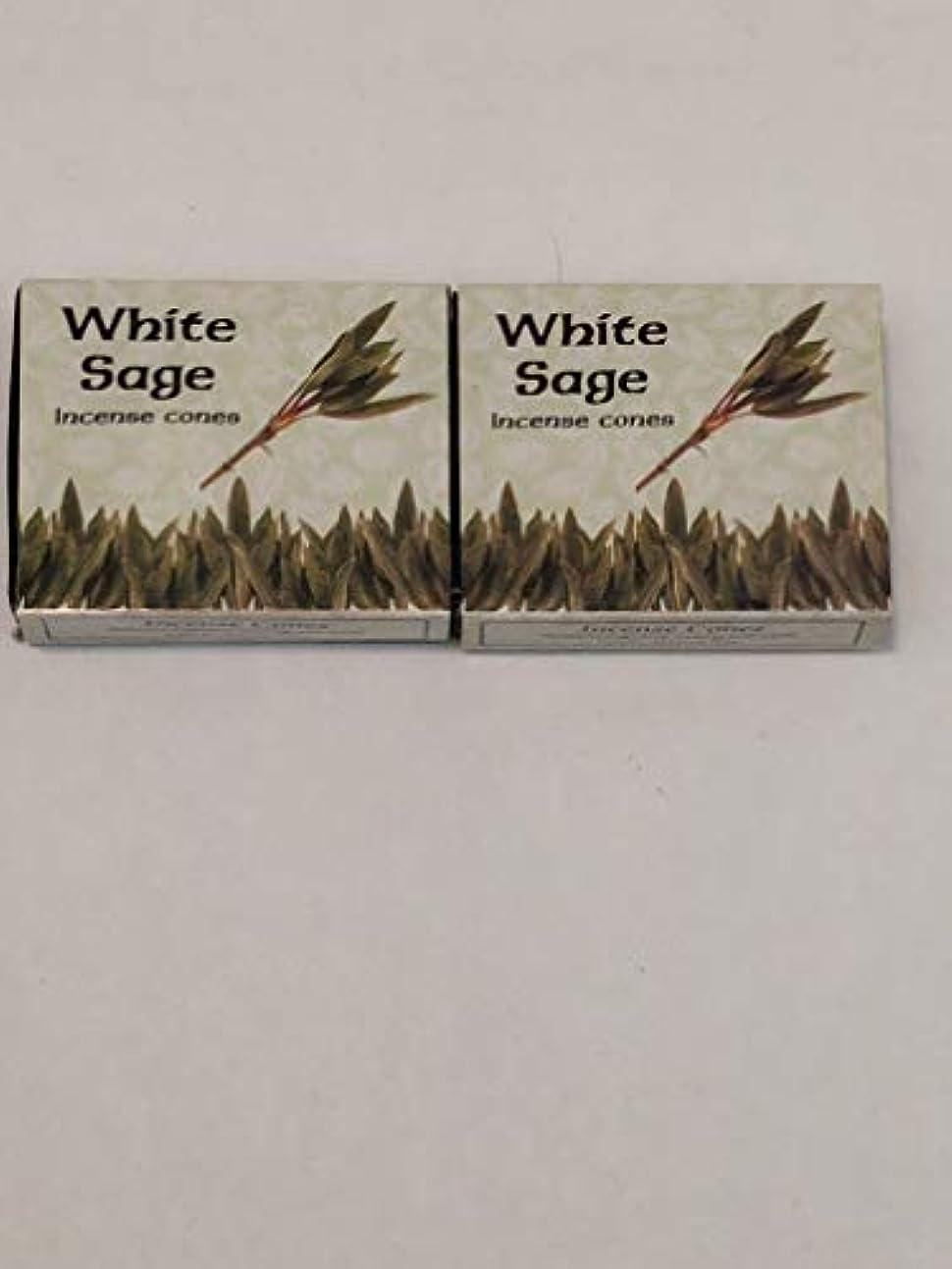 タッチデータ許さないKamini ホワイトセージ線香 マルチパック 2 Packs (20 Cones) ブラウン