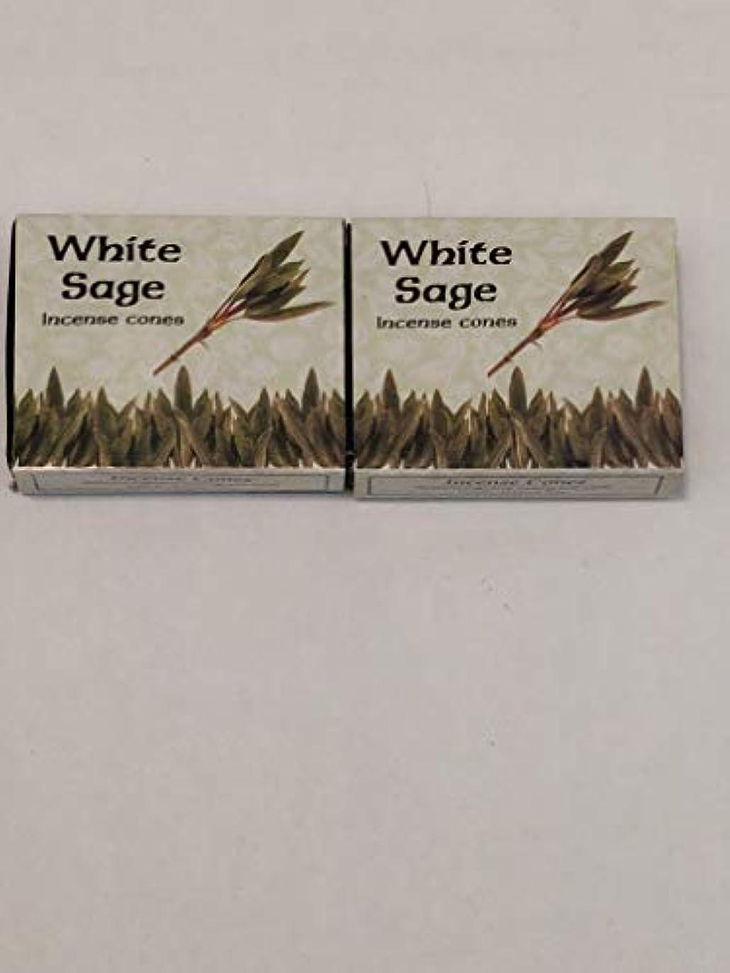レインコート持参夢中Kamini ホワイトセージ線香 マルチパック 2 Packs (20 Cones) ブラウン
