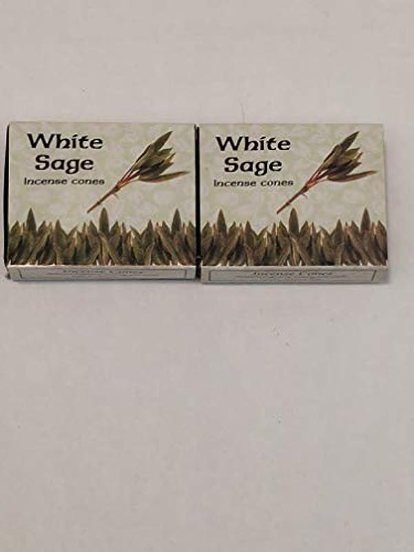 出撃者敬ナンセンスKamini ホワイトセージ線香 マルチパック 2 Packs (20 Cones) ブラウン