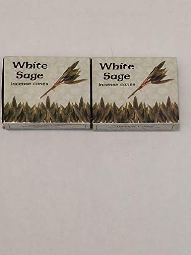 微生物残高顕著Kamini ホワイトセージ線香 マルチパック 2 Packs (20 Cones) ブラウン