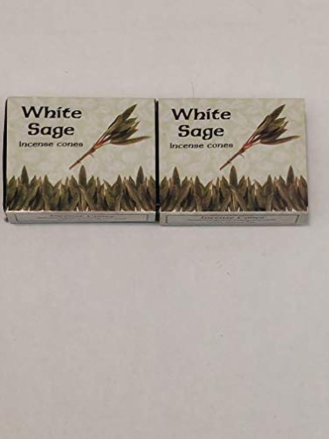 予言する文字通りフィットKamini ホワイトセージ線香 マルチパック 2 Packs (20 Cones) ブラウン