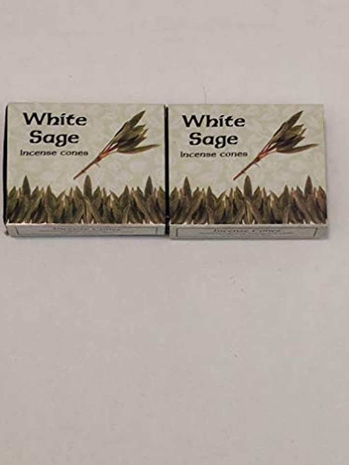 不利ポケット展開するKamini ホワイトセージ線香 マルチパック 2 Packs (20 Cones) ブラウン