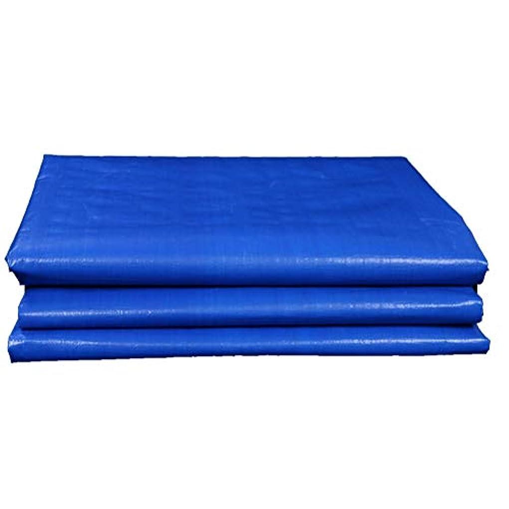 しがみつく祭りアルバニー防水シートリノリウム ポリエチレンをラミネートした防水ターポリン直接溶液 ZHANGQIANG (Color : A, Size : 5x6m)