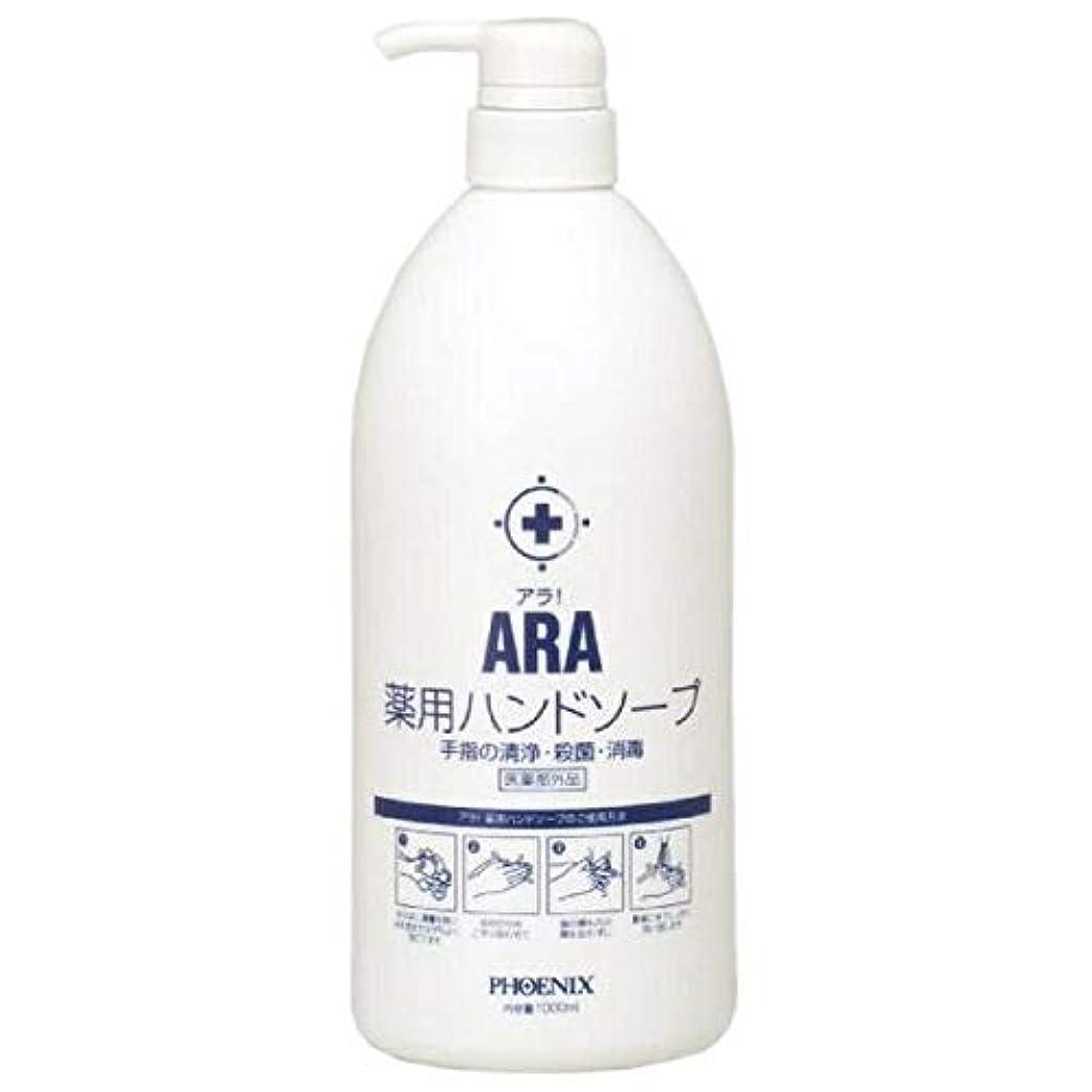 数学忠実に挑むARA 薬用ハンドソープ(ボトルタイプ) 1000ml×10本入