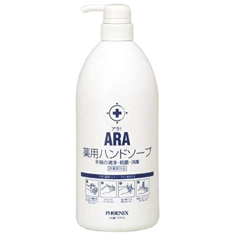 のぞき見学部粒子ARA 薬用ハンドソープ(ボトルタイプ) 1000ml×10本入