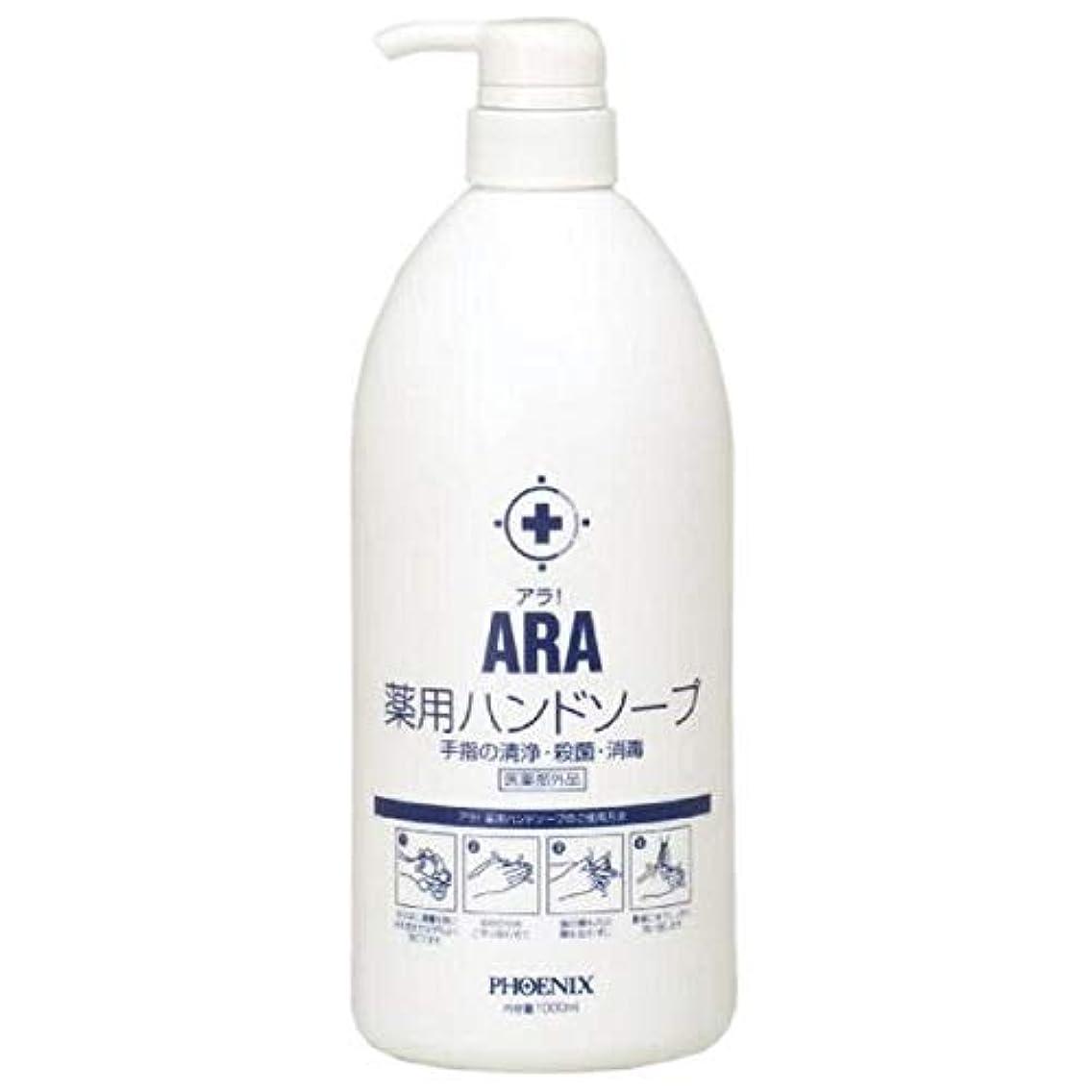 気分が良い間接的中にARA 薬用ハンドソープ(ボトルタイプ) 1000ml×10本入