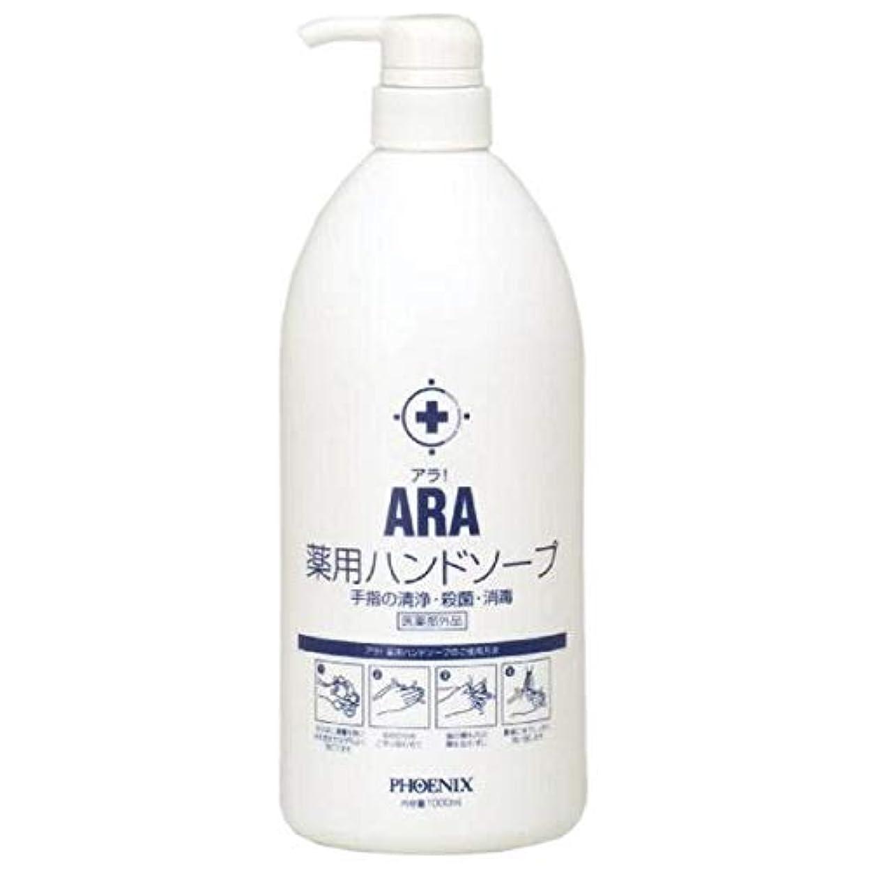 回復ナインへ要求するARA 薬用ハンドソープ(ボトルタイプ) 1000ml×10本入