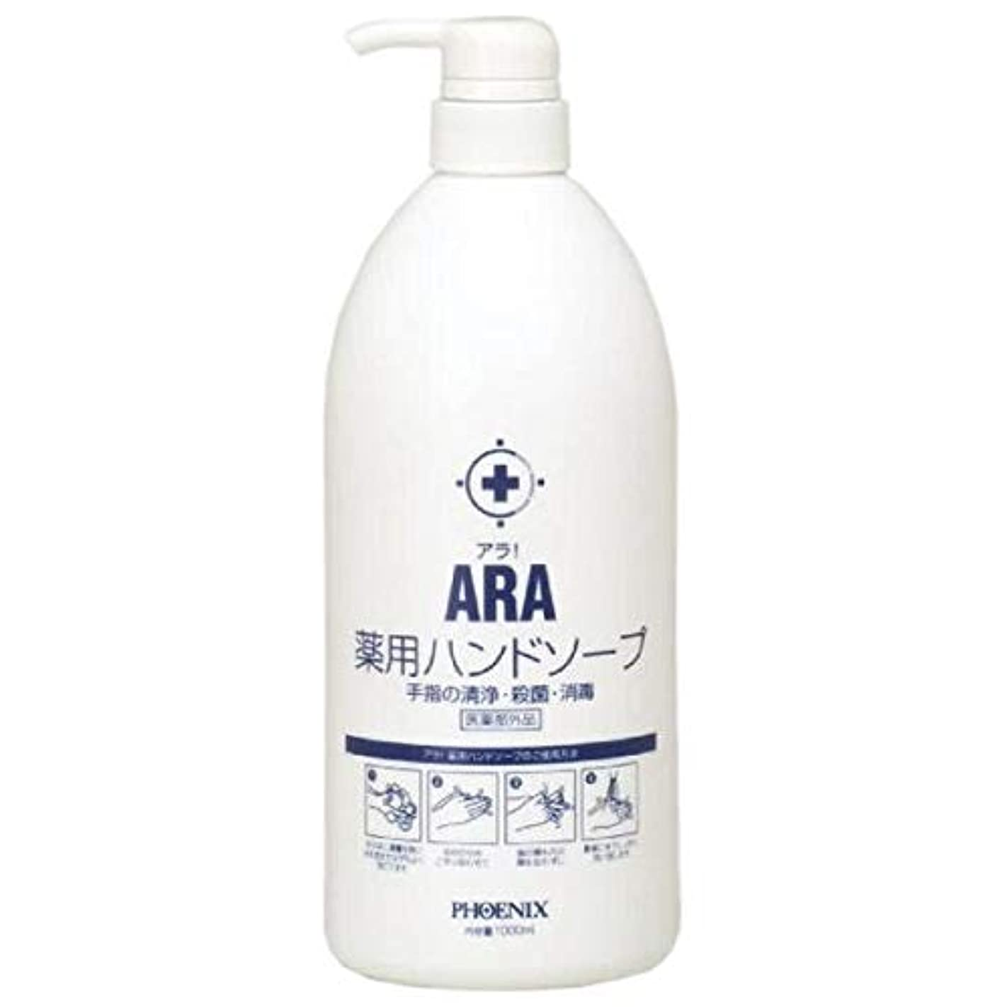 斧レクリエーションソーシャルARA 薬用ハンドソープ(ボトルタイプ) 1000ml×10本入