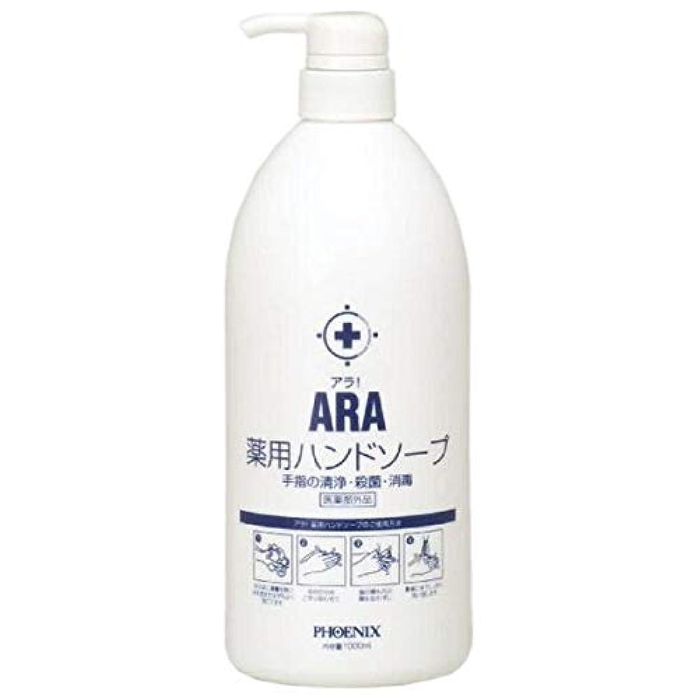 対摂氏度用心するARA 薬用ハンドソープ(ボトルタイプ) 1000ml×10本入