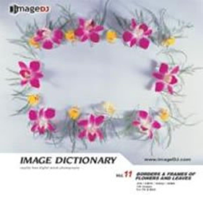 回復吸収剤神経障害イメージ ディクショナリー Vol.11 花飾り