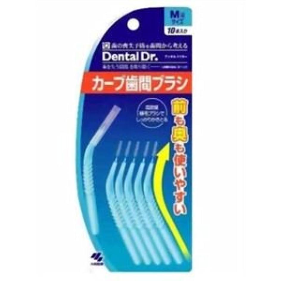 大人男性アウトドアカーブ歯間ブラシM10本×10