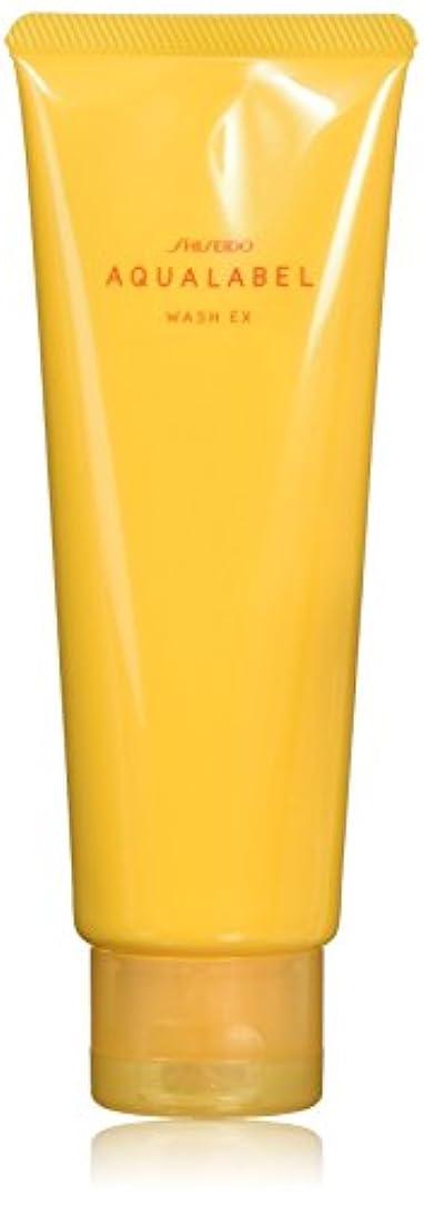 流行銀水族館アクアレーベル 豊潤泡洗顔フォーム 110g