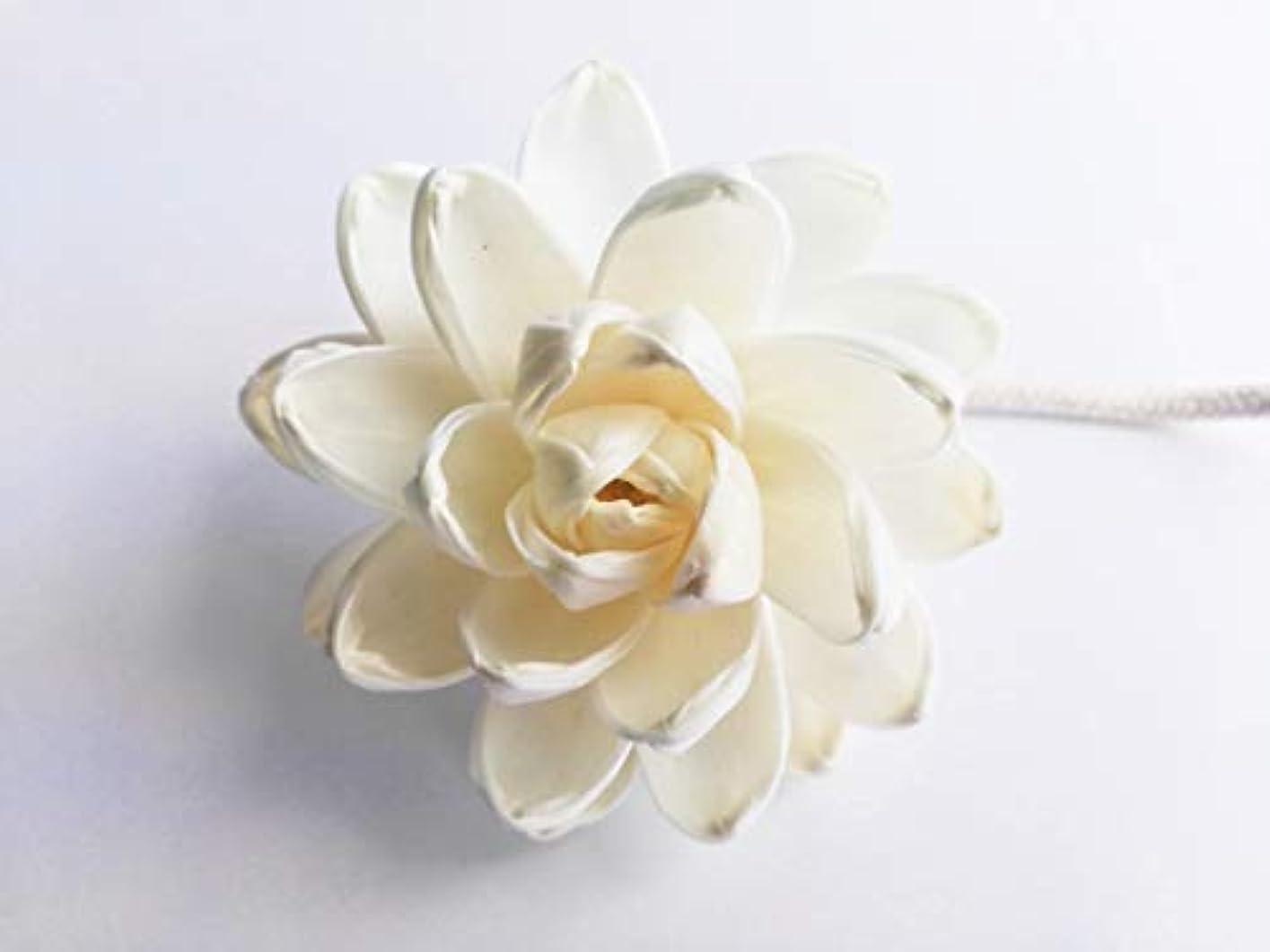 プラットフォーム触手抑圧するMAYA フラワーディフューザー ソラフラワー ロータス (8cm) [並行輸入品] | Aroma Flower Diffuser Sola Flower - Lotus