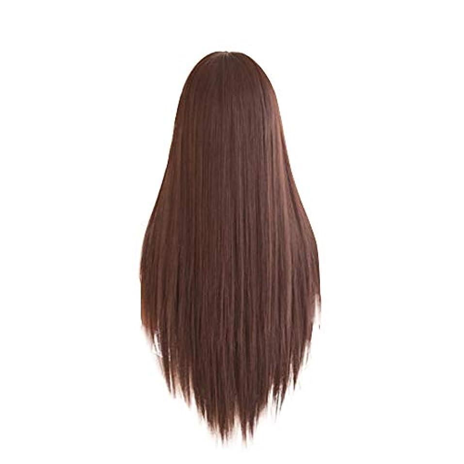 価値男やもめ犯す女性のためのロングストレートヘアウィッグブラウン気質フェイスハイエンドかつら自然に見える耐熱性合成ファッションウィッグ