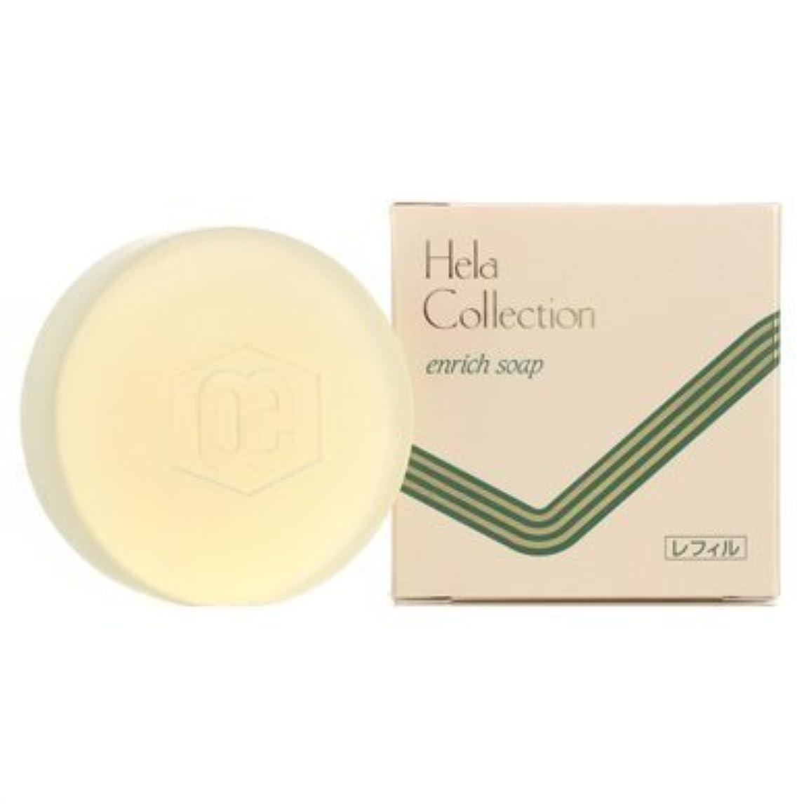 受け継ぐ伝染性エトナ山大高酵素 エンリッチシリーズ エンリッチソープ(化粧洗顔石けん) レフィル100g
